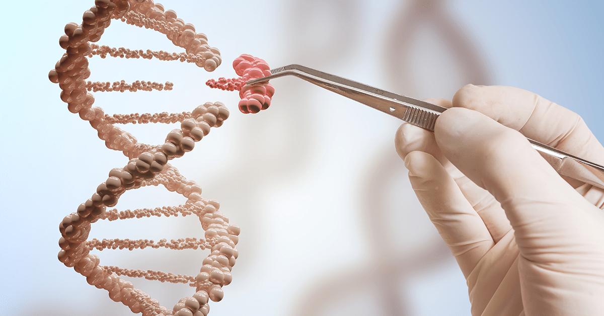 Šta je Di-Džorov sindrom? | Premium Genetics prenatalni test