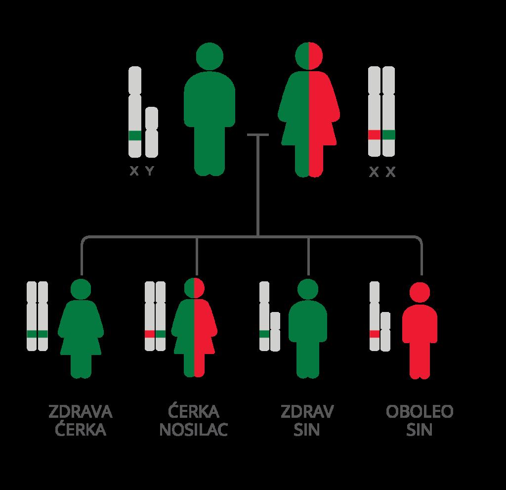 Bolesti povezane sa X hromozomom