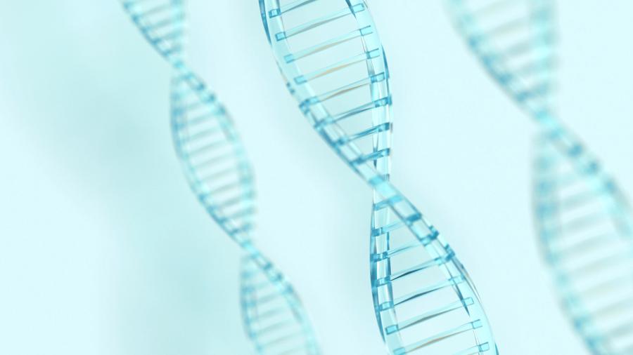 Šta je trizomija?   Premium Genetics