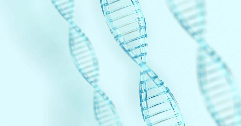 Šta je trizomija? | Premium Genetics