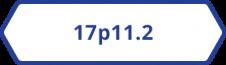 17p11.2