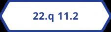 22.q 11.2