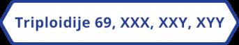 Triploidije - 69, XXX, XXY, XYY